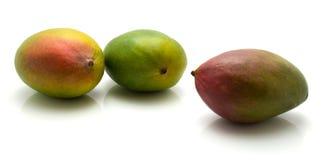 Fresh mango isolated. Mango isolated on white background three common Stock Photo