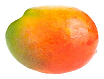 Mango isolated on white Royalty Free Stock Image