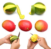 Mango with knife. Variery of mango and how to peel mango stock photography