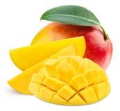 Mango leaf. Mango fruit and leaf on white background royalty free stock photo