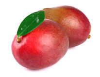 Mango with leaf on white Royalty Free Stock Image