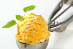 Mango lemon ice cream Royalty Free Stock Photo
