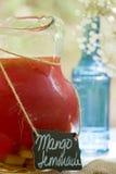 Mango lemonade Royalty Free Stock Images
