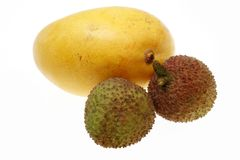 Mango and litchi Royalty Free Stock Image
