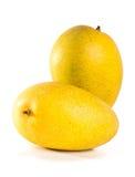 Mango. mango dulce en fondo. Imagen de archivo