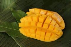 Mango maturo Fotografia Stock Libera da Diritti