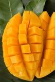 Mango maturo Immagine Stock Libera da Diritti