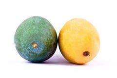 Mango maturo giallo e mango verde dal lato capo isolato alimento sano bianco della frutta del fondo Immagini Stock Libere da Diritti