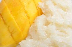 Mango med klibbiga ris Royaltyfri Fotografi