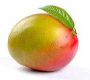Mango met bladeren Stock Afbeeldingen