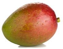 Mango met dalingen Stock Foto
