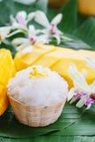 Mango met kleverige rijst Stock Foto