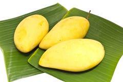 Mango na bananowym liść Obraz Royalty Free