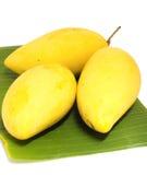 Mango na bananowym liść Obrazy Stock