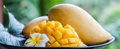 Mango nei termini naturali su un bello fondo tropicale Immagine Stock Libera da Diritti