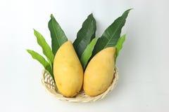 Mango och blad i korg på vit bakgrund arkivfoton