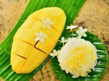 Mango och klibbiga ris arkivbild