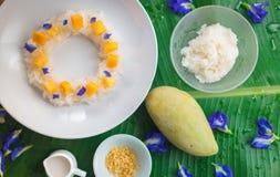 Mango och klibbiga ris royaltyfri foto