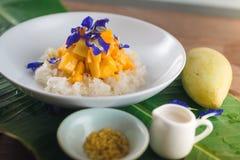 Mango och klibbiga ris arkivfoton