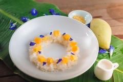 Mango och klibbiga ris royaltyfria foton