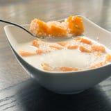 Mango- och tapiokapudding i kokosnöt mjölkar Royaltyfri Bild