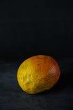 Mango op donkere achtergrond royalty-vrije stock foto