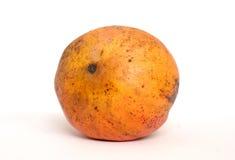 Mango på den vita bakgrunden Royaltyfri Bild