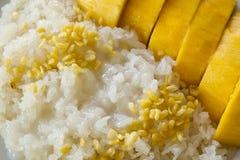 Mango på klibbig rice Fotografering för Bildbyråer