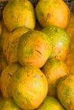 Mango på marknad Arkivfoto