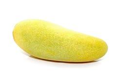 Mango på white royaltyfri fotografi