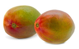 Mango pair isolated Stock Images