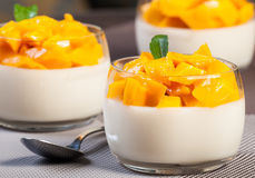 Mango Panna Cotta Royalty Free Stock Photos