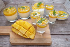 Mango Panna Cotta Stockfotos