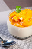 Mango panna cotta Royalty Free Stock Photography