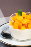 Mango panna cotta Stock Image