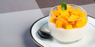 Mango panna cotta Royalty Free Stock Photo