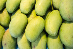 Mango. This photo are mango planing in Thailand Royalty Free Stock Photo