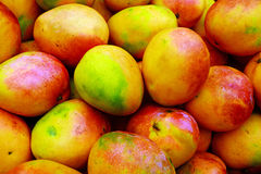 Mango pile. Ripe mango pile in the market Royalty Free Stock Image