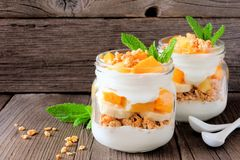 Mango, pineapple parfaits in mason jars on rustic wood. Healthy mango and pineapple parfaits in mason jars with a rustic wood background Stock Images