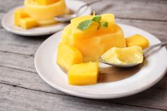 Mango pudding Royalty Free Stock Photography