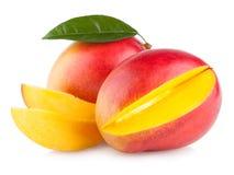 Mango royalty free stock image