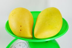 Mango ripen on green weighting scale Royalty Free Stock Photos