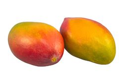 Mango rosso-giallo due isolato su un fondo bianco Fotografia Stock Libera da Diritti