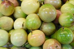 mango's royalty-vrije stock afbeelding