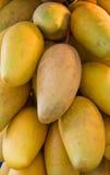 Mango's door de bos Royalty-vrije Stock Foto's