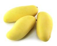 Mango's op een witte achtergrond Royalty-vrije Stock Afbeelding