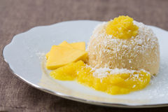 Mango Semolina  Pudding Royalty Free Stock Photo