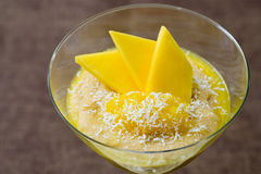 Mango Semolina  Pudding. Selective focus image of a semolina pudding with mango and coco flakes Stock Photo