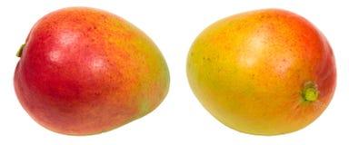 Mango Set. Isolated on White Background stock photos