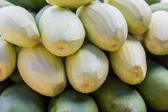 Mango skalar läcker frukt royaltyfri bild